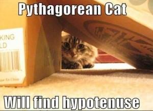 PythagoreanCat