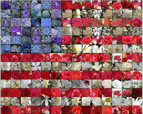 flower-flag