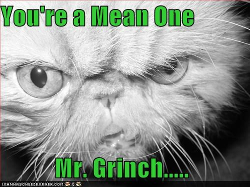 grinchcat