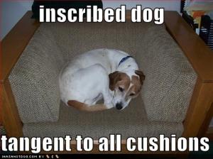inscribed-dog