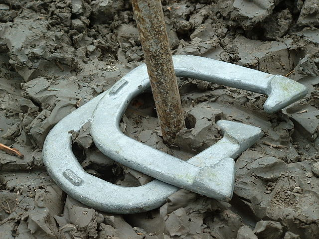 640px-Horseshoes_game