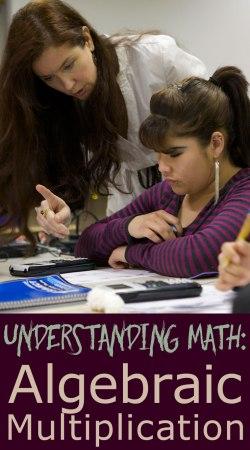 Understanding-Algebra